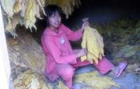 2008_113