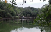 Bangkrachao 12